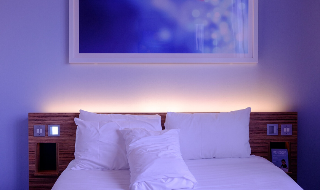 Bed Bugs in Hotels: The Machine all Hotels Owners Need